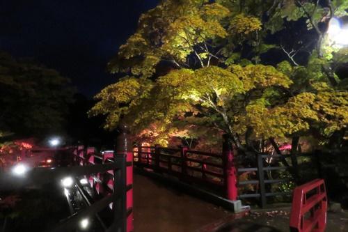 2017.11.4 弥彦公園2.JPG