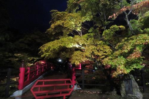 2017.11.4 弥彦公園3.JPG