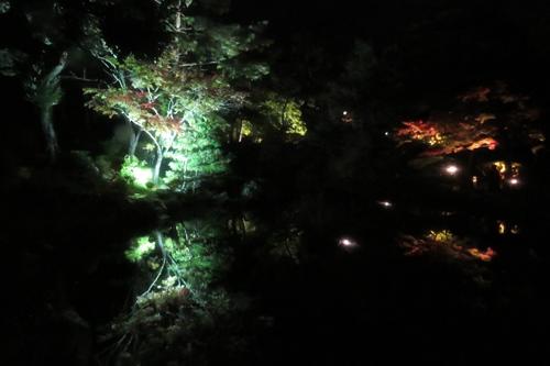 2017.11.4 弥彦公園4.JPG