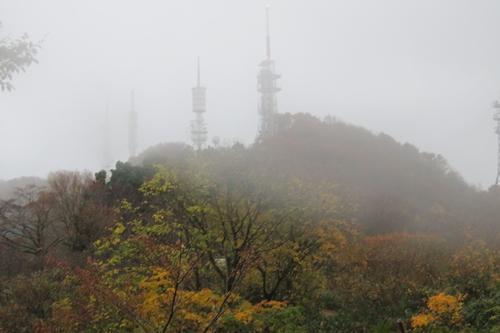 2017.11.4 弥彦山 11.JPG