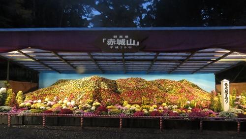 2017.11.4 弥彦神社15.JPG
