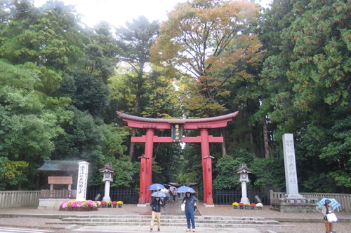 2017.11.4 弥彦神社2.JPG