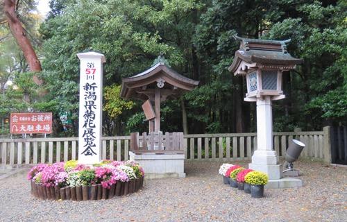 2017.11.4 弥彦神社3.JPG