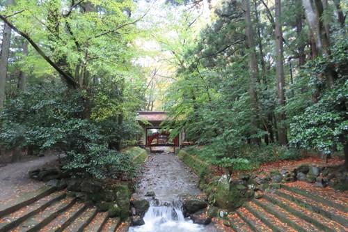 2017.11.4 弥彦神社4.JPG