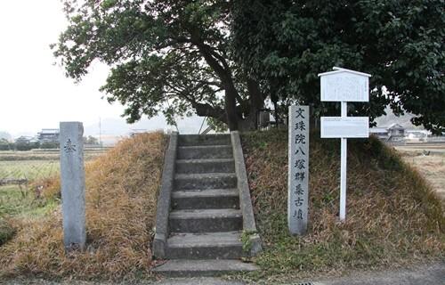 2014.1.1 八塚群.JPG
