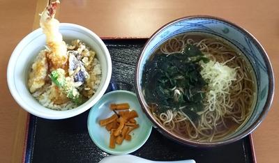 2017.5.8 東名10.JPG