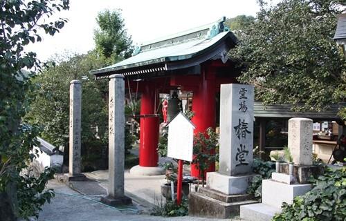 椿堂 門とお杖椿.JPG