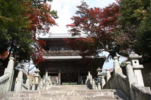 箸蔵寺 仁王門.JPG