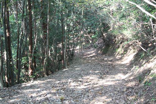 箸蔵寺 遍路道2.JPG